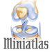 Miniatlas Joint Diseases